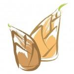 タケノコのアク抜きの手順と茹で時間をマスターして簡単調理