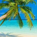 5月のGWにハワイに行くなら知っておきたい気温気候と服装