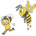 蜂に刺された時の対処法は?危険な種類は?二度目だけど大丈夫?
