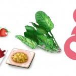 妊娠中には葉酸を!葉酸の入った食品やサプリメントなど