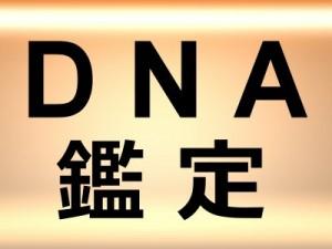 DNA鑑定