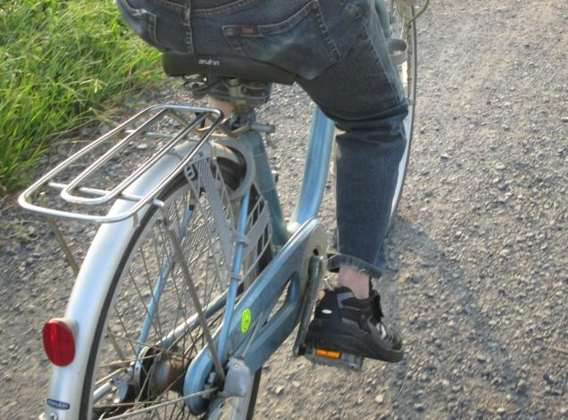 自転車,痔,予防