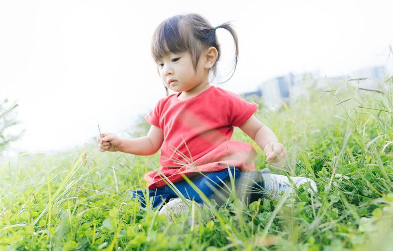 女の子の名付けは漢字or平仮名?